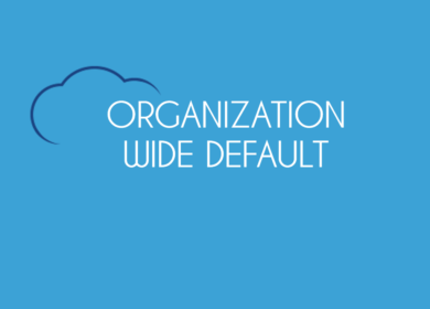 Record Visibility e Organization Wide Default